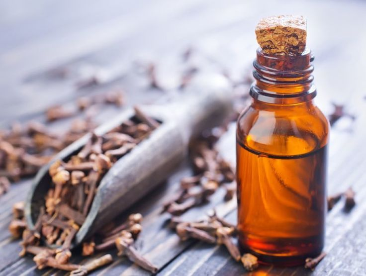 Feature Friday: Clove Essential Oil